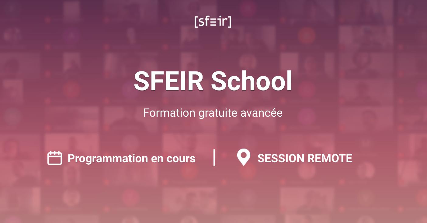 sfeir-school